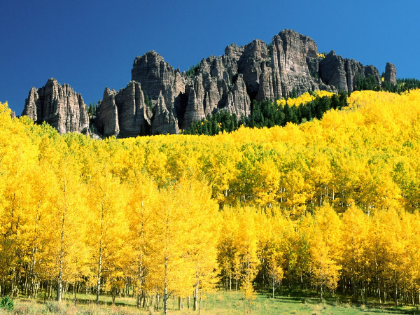 Colorado.Uncompahgre-Peak-with-Surrounding-Aspen.600