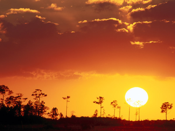 Florida-Setting-Sun-over-the-Swampland-Everglades-National-Park-600