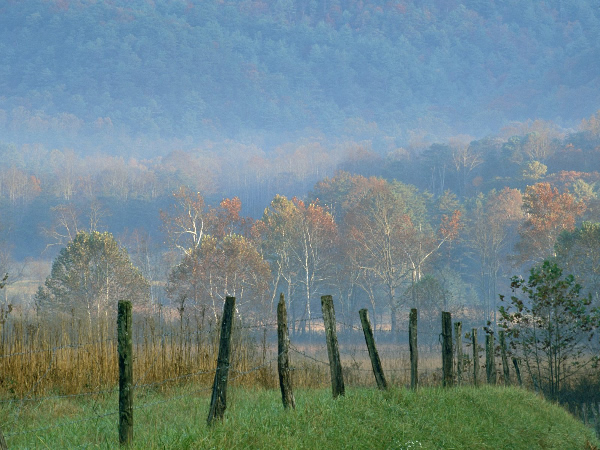Tennessee.600.Cades-Cove-Great-Smoky-Mountains-National-Park